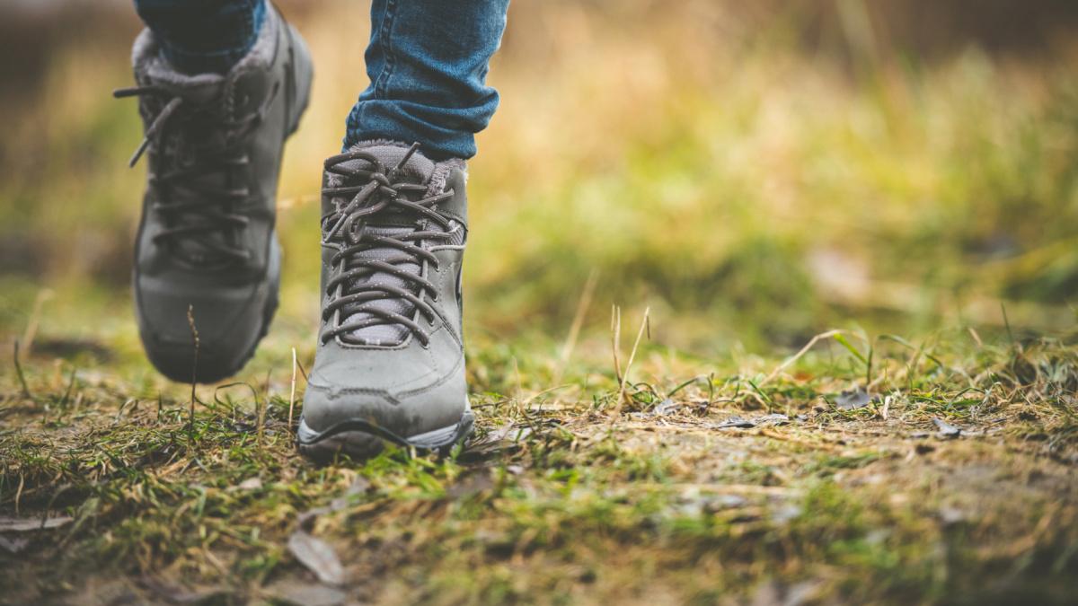 Promenadstråk och vandringsleder